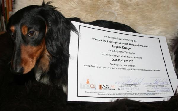 Zertifikat D.O.Q. Test 2.0 2012
