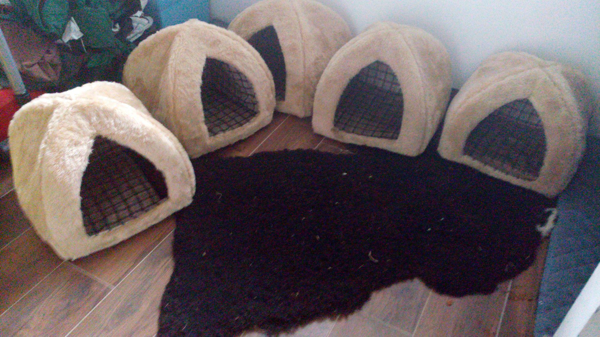 Dackel Hüggelzwerge Spielzimmer Hundehaus im neuen Haus September 2016