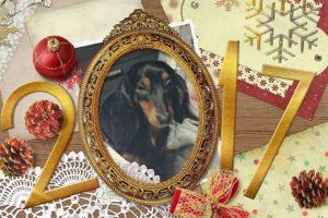 Neujahrsgrüße 2017 Edda von den Hüggelzwergen