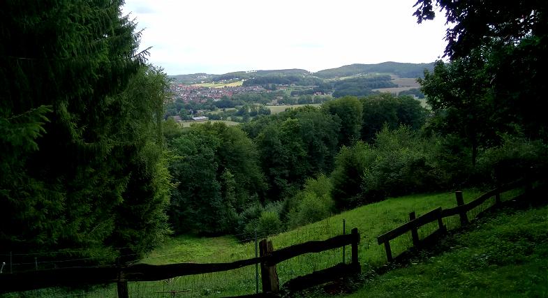 Dackel Hüggelzwerge RudelLeben Basti Spaziergang Borgberg