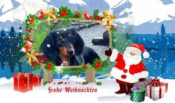 Weihnachtsgrüße von Edda!